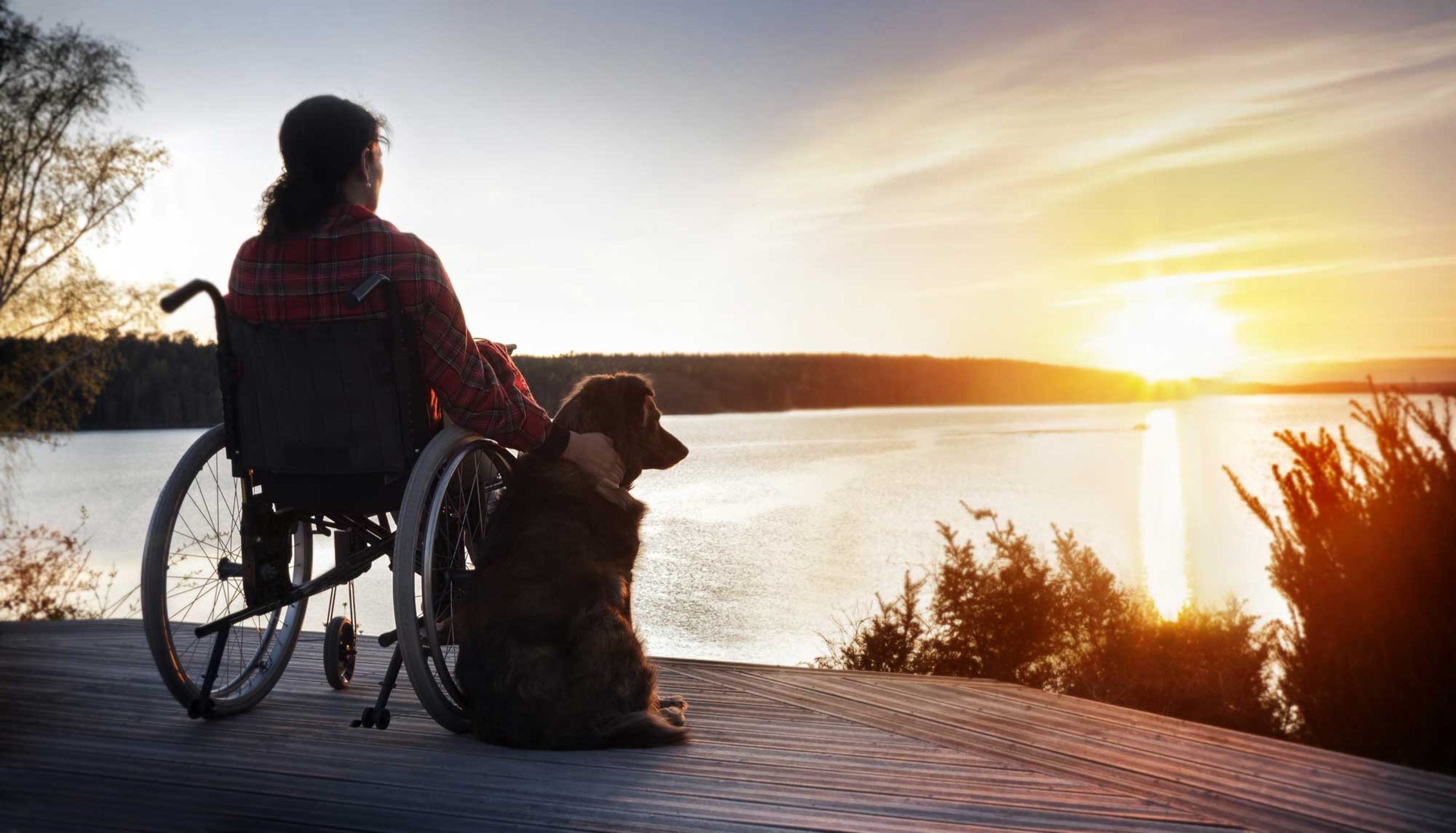 ELA familiar familial esclerose lateral amiotrófica genética hereditária
