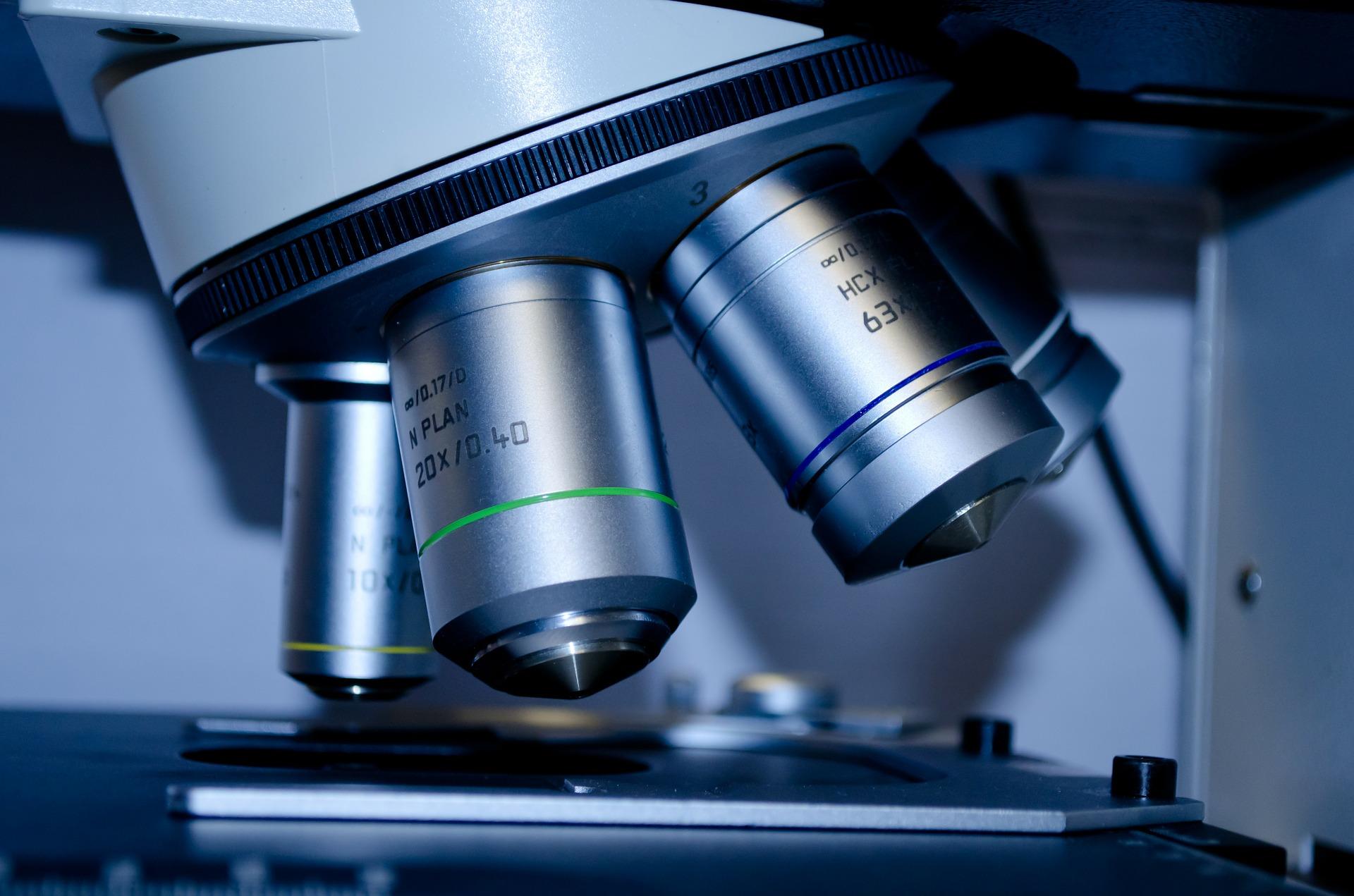 Cariótipo com banda G, CGH-Array, SNP-Array, FISH, o que são os exames da citogenética?