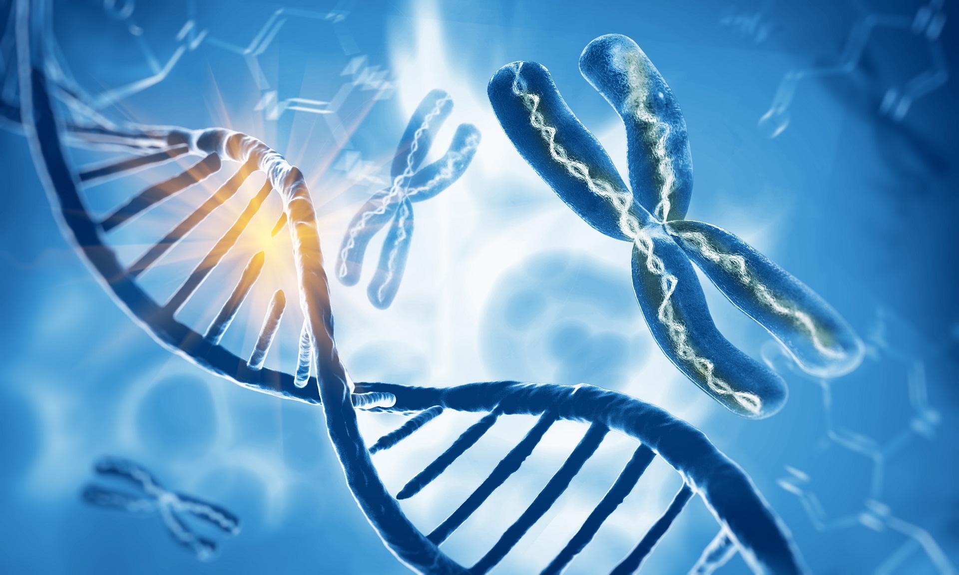 o que é um cromossomo e cariótipo com banda G cromossomos exame cariótipo com banda G
