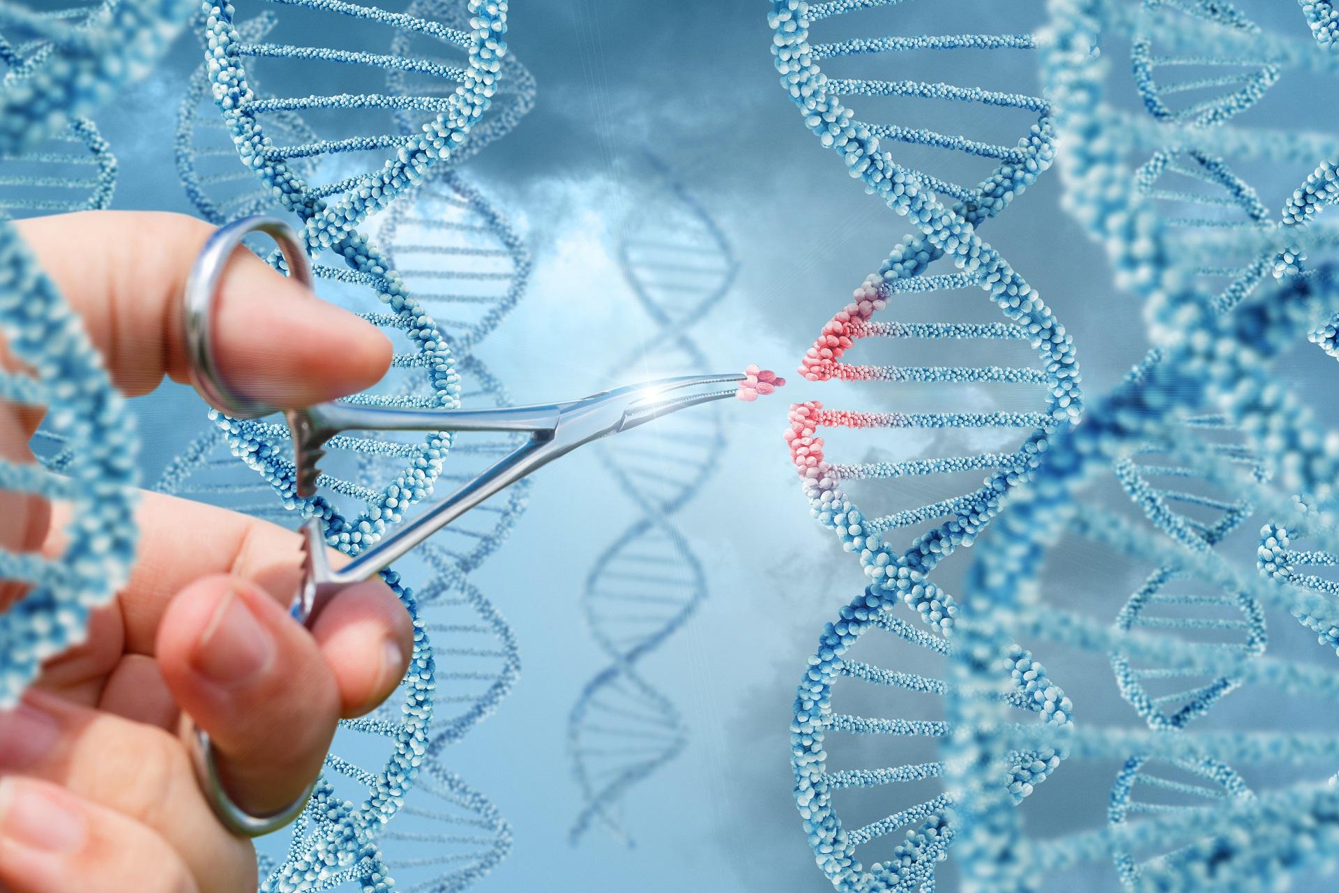 Terapia gênica, tratamento para doenças genéticas ainda experimental, que visa utilizando um vetor (vírus), a mudança de um gene mutado por um gene saudável
